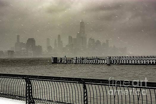 New York Under Siege by Reynaldo Brigantty
