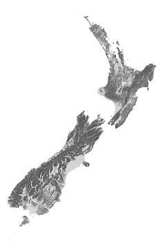 New Zealand Terrain Map - Gray by Ian Grasshoff