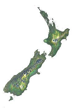 New Zealand Terrain Map - Green by Ian Grasshoff