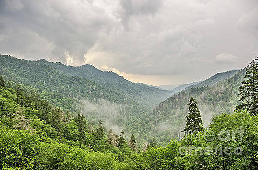 Newfound Gap in Great Smoky Mountains National Park by Sue Smith