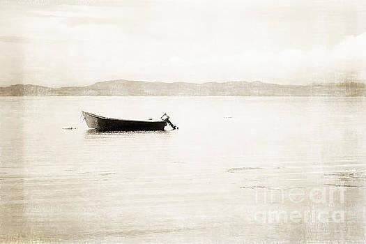 Newfoundland Fishing Boat - Fine Art Sepia by Miss Dawn