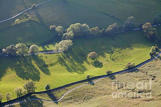 Newlands Beck by Gavin Dronfield