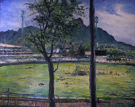 Newlands cricket ground Cape Town South Africa by Enver Larney