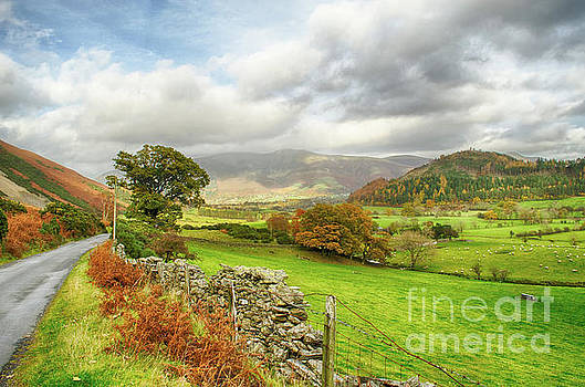 Newlands Valley Floor Cumbria by Linsey Williams