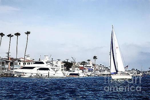 Newport Beach Harbor by Pamela Moran