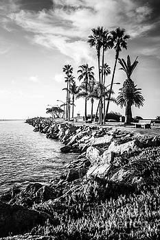 Paul Velgos - Newport Beach Jetty Black and White Picture