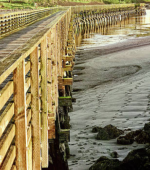 Newport Oregon - Pier by Image Takers Photography LLC - Laura Morgan