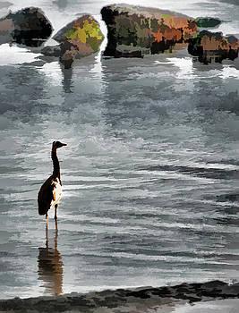 Newport Oregon - Watchful Eye by Image Takers Photography LLC - Carol Haddon