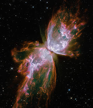 NGC 6302 Hubble 2009 by NASA and the European Space Agency