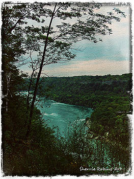 Niagara Lookout by Sherrie Robins