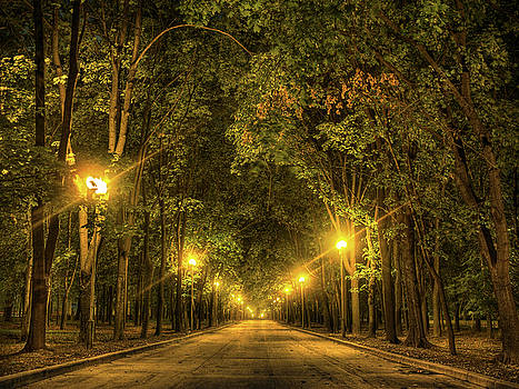 Night alley near Lomonosov Moscow university by Alexey Kljatov