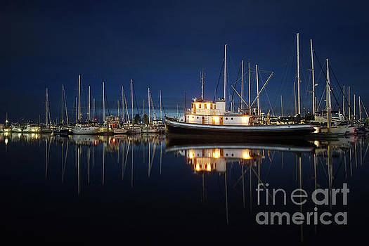 Night at the Marina by Jason Fortenbacher