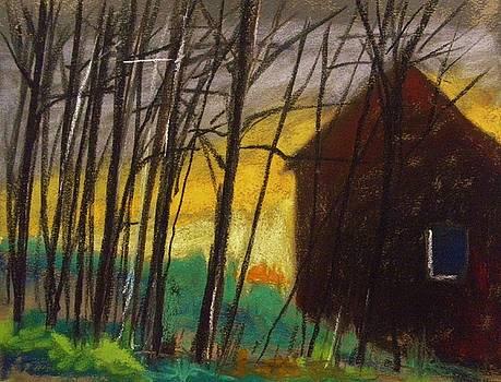 Night Barn by John Williams