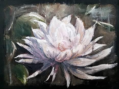 Night Bloom by Esmeralda Acupan
