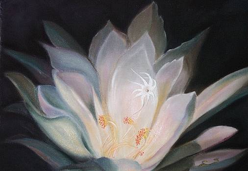 Night bloom by Janine Shideler