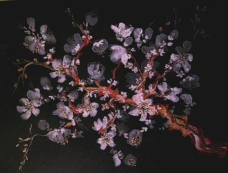 Night Blossoms by Ana Bikic
