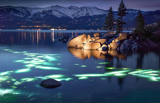 Night Dive - Lake Tahoe by Tony Fuentes