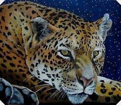 Night Eyes by Syndi Michael