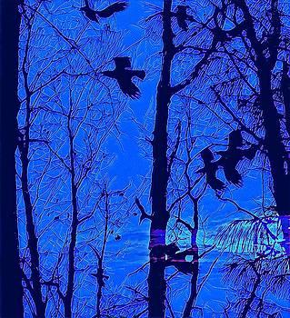 Brenda Plyer - Night Flight 2 Blue