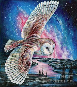 Night Flight Barn Owl by Anne Koivumaki - Fine Art Anne