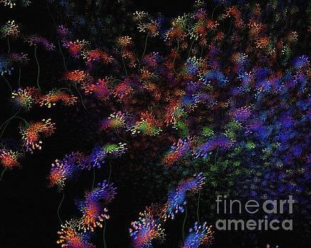 Greg Moores - Night Flowers