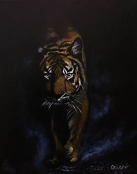 Night Hunter by Jean Yves Crispo