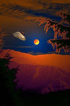 Bliss Of Art - Night Journey