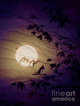Night Light by Robert Ball