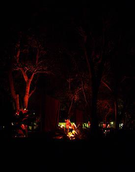 Nicole I Hamilton - Night Lights