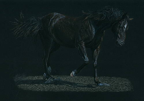 Night Mare by Laura Klassen
