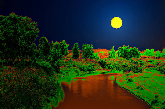 Bliss Of Art - Night Moon and Nature