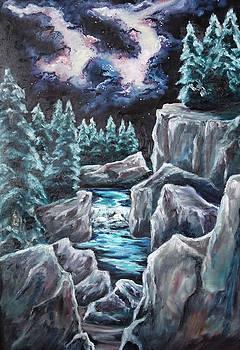 Night of Stars by Cheryl Pettigrew