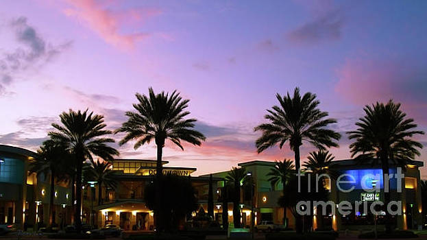 Night on the Town Palm Beach Florida Photo 515 by Ricardos Creations