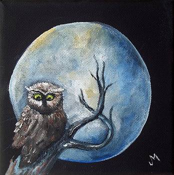 Night Owl by Joan Mace