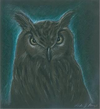 Night Owl by Linda Nielsen