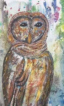 Night Owl by Marita McVeigh
