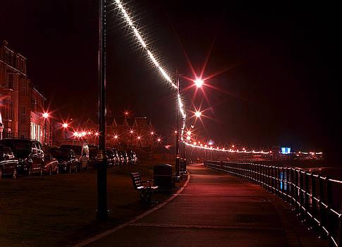 Svetlana Sewell - Night Road