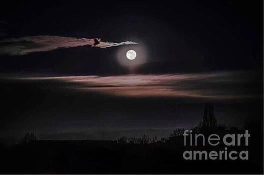 Night Sky by Alejandra Flores