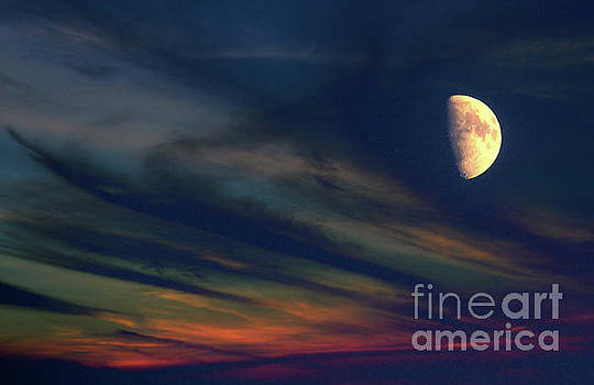 Night Sky by Anna Sheradon