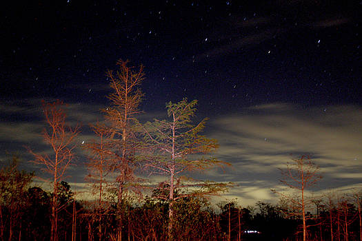 Night Sky at Burns Lake by Drew Smith