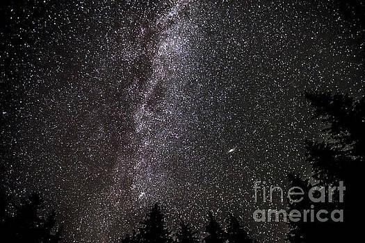 Rod Wiens - Night Sky at Davis Lake