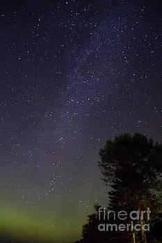 Night Sky by CJ Benson