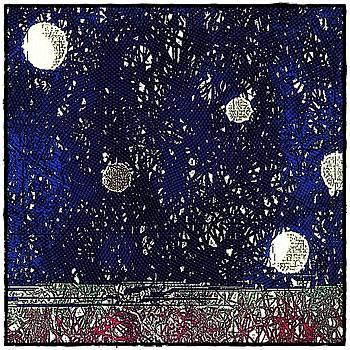 Night Sky View by Cooky Goldblatt