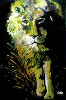 Night Stalker by Seth Weaver
