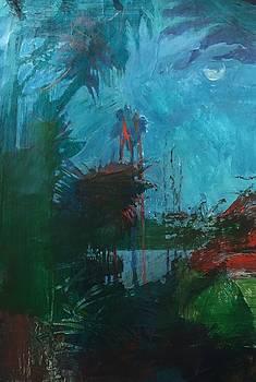 Night Thinking by Trish Vevera