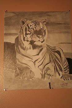 Night Tiger by Brandy LeBlue