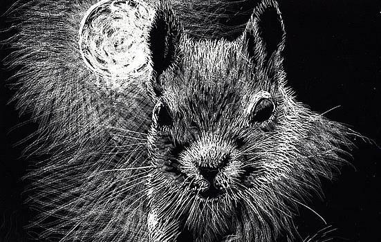 Night Visitor by Lis Zadravec