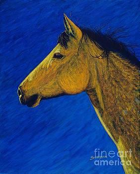 Night Wind by Cynthia Sampson