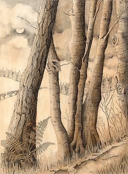 Night Woodland by Lynne Henderson