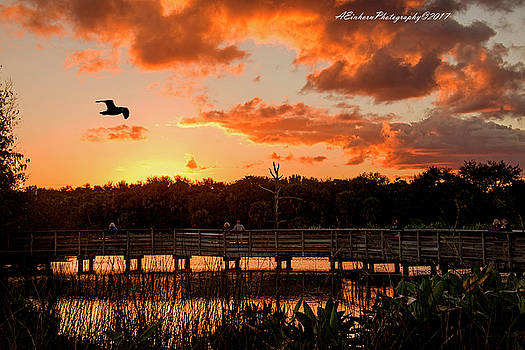 Nightfall in South Florida by Allan Einhorn